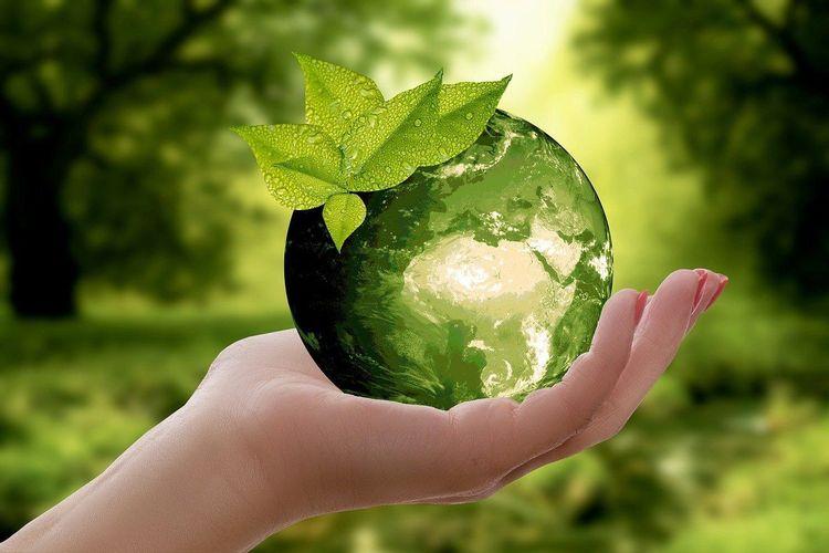 standards in environmental industry